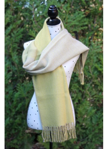 Gold Essence Pashmina
